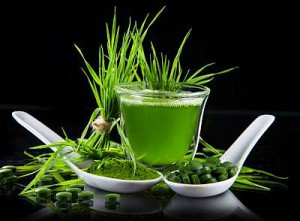 zelene-potraviny.jpg